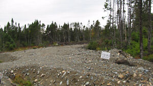 Land that has been cleared off to build on St. John's Newfoundland image 1
