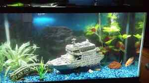 40GL Fish Tank for sale!