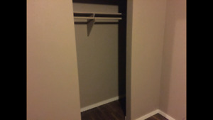 Awesome roommate wanted