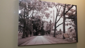 Beautiful Picture Canvas  MUST GO ASAP!
