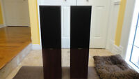 Pair of Monitor 9 floor speakers.  Two-way.  Perfect condition