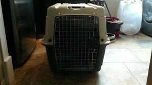 Medium Size Travel Kennel