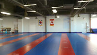 Hong Park Tae Kwon Do College - New facility, New Location!
