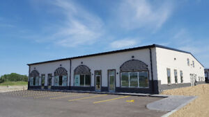 New 17,460 sq.ft. 9 Unit Industrial Condo For Sale in Red Deer