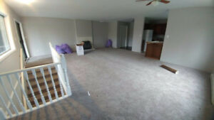NEWLY RENOVATED - New floors & paint with utilities Included