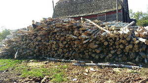 Seasoned birch and tamarack firewood