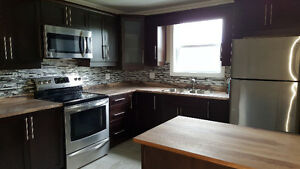 2 bedroom appatment in dunlop