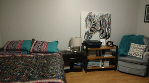 Room for Sublet - 5 Minutes to MUN - Female Student St. John's Newfoundland image 1