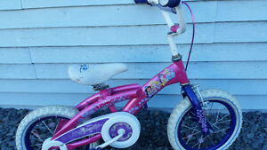 Disney princes bike