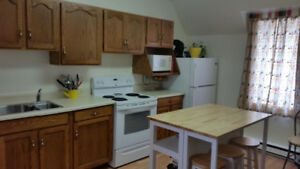 Available Dec 1 Two bedroom upstairs apartment Cobden ON