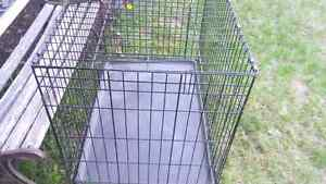 Cage a Chien marque life stages
