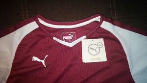 PUMA (DRY CELL) JERSEY T-SHIRT BRAND NEW Cambridge Kitchener Area image 2