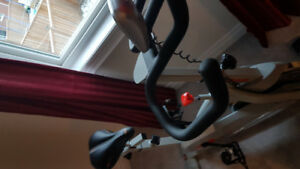 spinning Cycle for sale