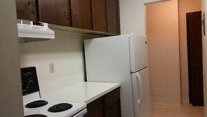 Walk to Chinook Mall- Beautiful 1 BR Apartment- FREE Wifi &Cable