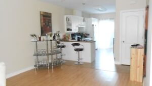 Large, Bright 2 bedrooms - February 1st. - St-Albert ON.