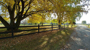 Looking for horse farm near Montreal ? potential revenue 7500/mo