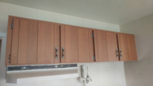 Free solid kitchen cabinets