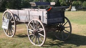 buck board  wagon