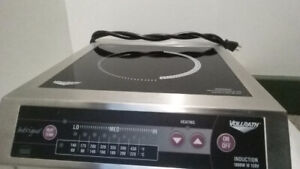 Induction Cooker 120V