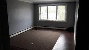 Large and quiet 3 bedroom