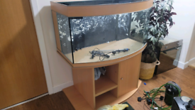 Marine fish tank 450l