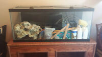 75 Gal Fish Tank $450 OBO- Comes with EVERYTHING you need!