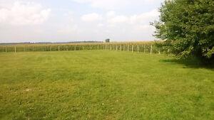 Pension/garderie dans ma maison à la campagne terrain clôturé.