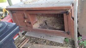 Guinea pig hutch