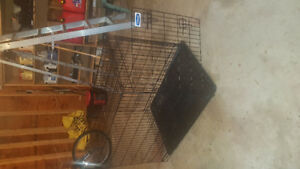 Dog Crate and Kennels for sale