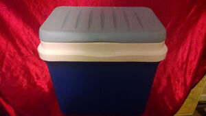 Cooler with 8 Freezer Packs