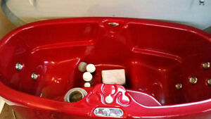 Spa Berry for sale Stratford Kitchener Area image 6