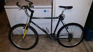 "Giant Mountain Bike, Large 20"""