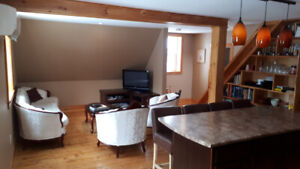Fully furnished two bedroom apartment short term rental.