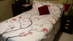 Duvet Set (Queen Size Duvet Cover and Two Pillow Cases) - $50
