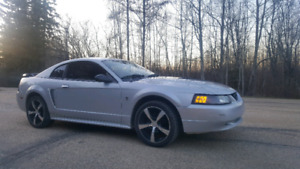 Selling my mustang. I own two vehicles I need a truck for work.