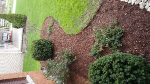 Landscaping for brand new homes London Ontario image 3