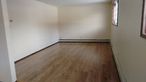 Fully RENOVATED, 1 Bedroom Apartment, 4 blocks from WHYTE AVE