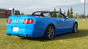 2011 Ford Mustang 5.0L GT Convertible 6 SPD Mint!!  Grabber Blue Edmonton Edmonton Area image 6