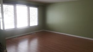 Large 3 BR  apt in smoke free bldg , utilities included