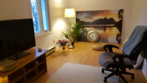 Super clean / very calm and cozy  41/2 appartement in VSL
