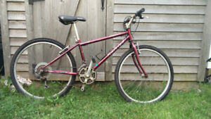 Raleigh Ruby Red Mountain Bike-Medium to Small Frame