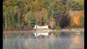 Lake Cottage Fall Rentals