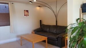 EAST SJ FULLY FURNISHED 1 BEDROOM H&L INCL & LAUNDRY