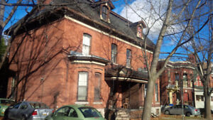 Huge All-Inclusive One Bedroom Sandy Hill Apartment (225 Daly)