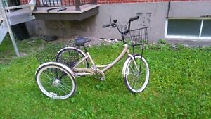 tricycle pour adulte 450$