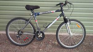 Supercycle Inferno Mountain Bike