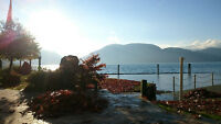 Waterfront House on Harrison Lake - Private Hot Tub, Beach & Doc