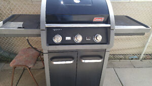 BBQ outdoor gas grill