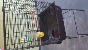 Large bird cage with stand & bird feed