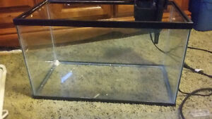 10 gallon tank Kitchener / Waterloo Kitchener Area image 1